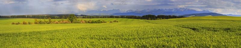 Łąka i góry Wiosenny dzień /Słowacja