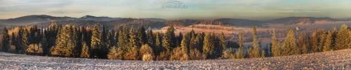 Orawa zimowy las Zima orawska
