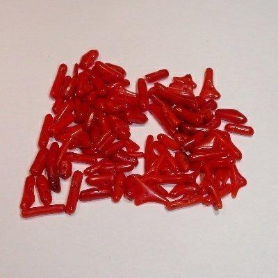 koraal klein rood ca. 5-11x2 mm