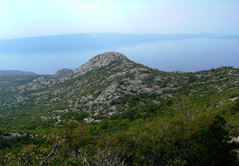 Vrančinica (711 m)