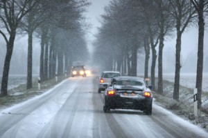 allee_im_winter