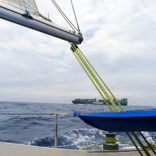 Po poledni ještě předtím, než začalo pršet, jsme se minuli s lodí tchajwanské společnosti Evergreen.