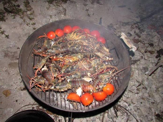 Výborné grilované langusty.