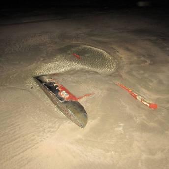 Utržený kýl v písku