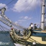 HMS-Rose_TIT