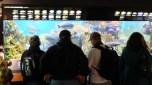Bostonské Aquarium