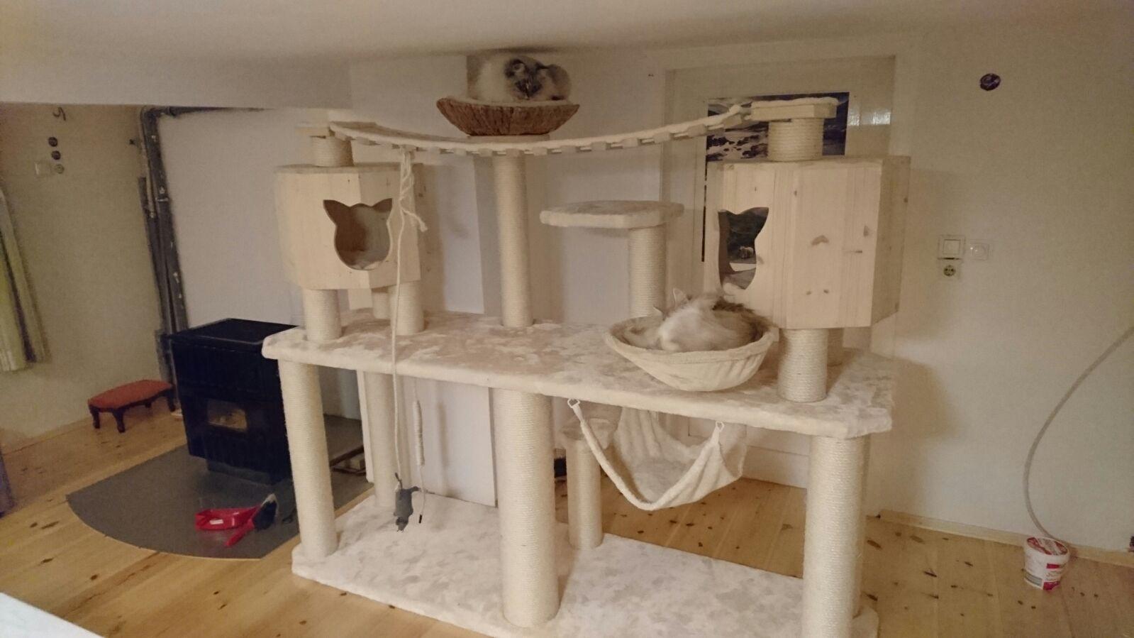ikea sisal teppich katze designer mobel katzenbesitzer. Black Bedroom Furniture Sets. Home Design Ideas