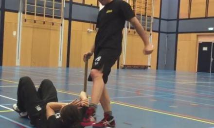 Ground Defense against a Stick Attack