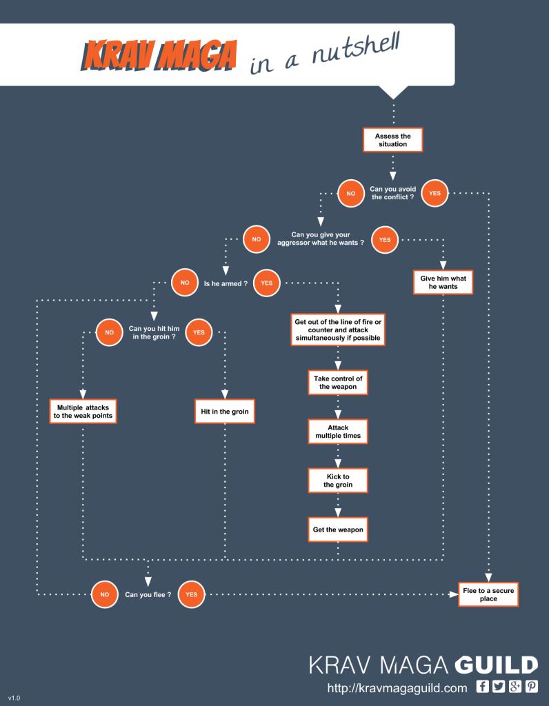 Krav Maga flow chart