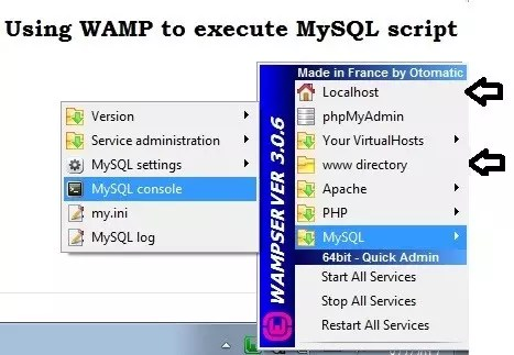 How to use WAMP server to execute your MySQL script