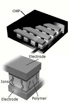 polymer memory working