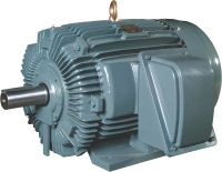 Induction Motor | FALK, KTR ROTEX, TB WOODS, RATHI ...