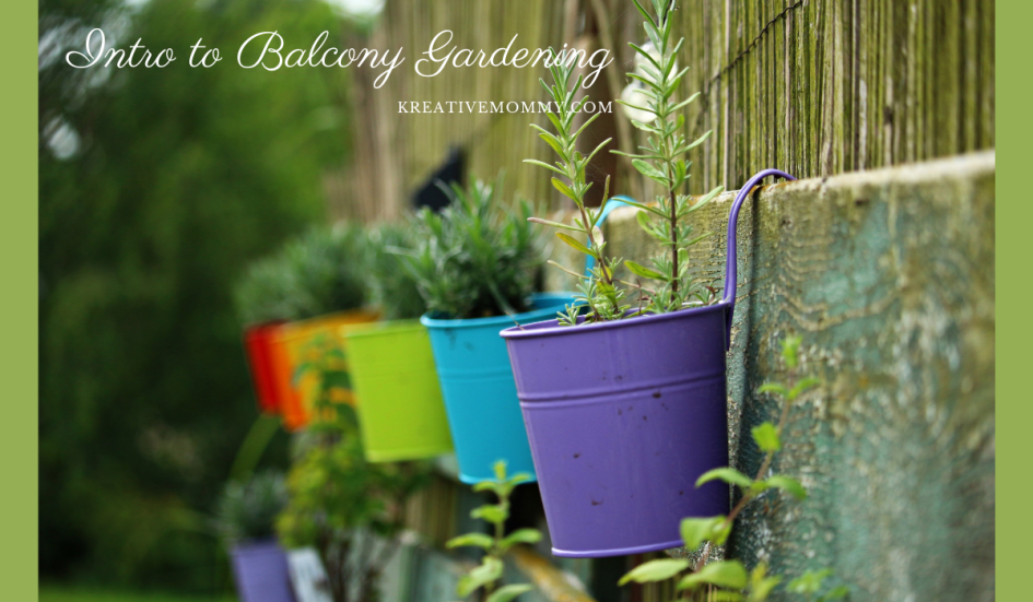 Balcony gardening in India