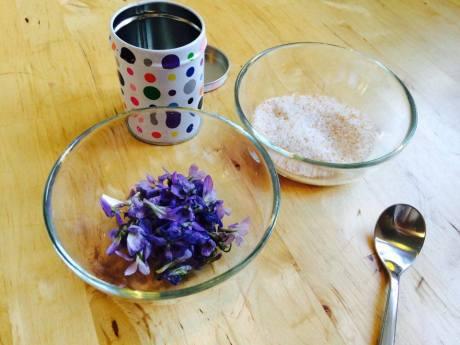 Ingredience pro cukrové fialky