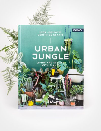 Cara Desain Rumah Urban Jungle Lengkap dari kreativv ID 3