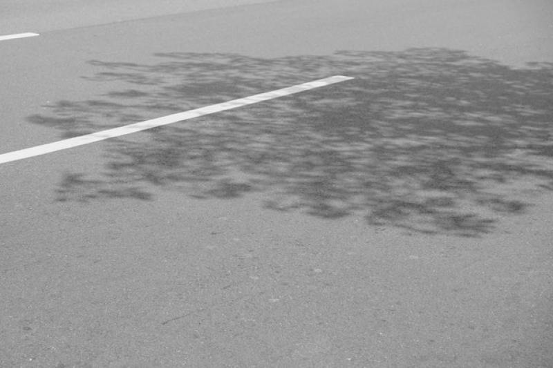 shadow photography 4