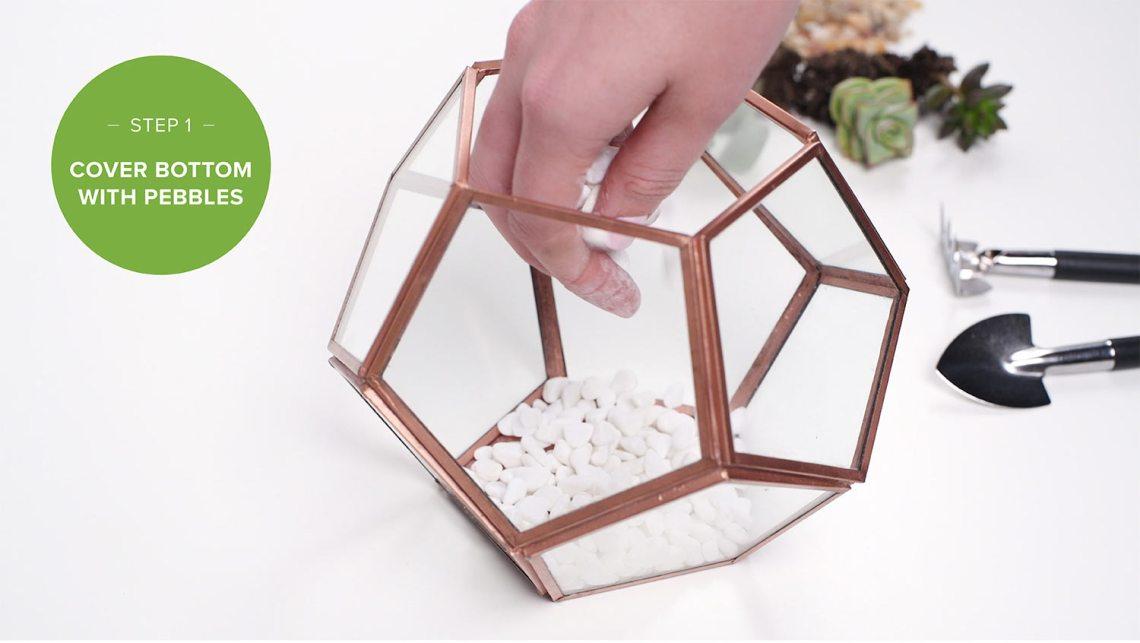 Langkah Pertama membuat diy terrarium