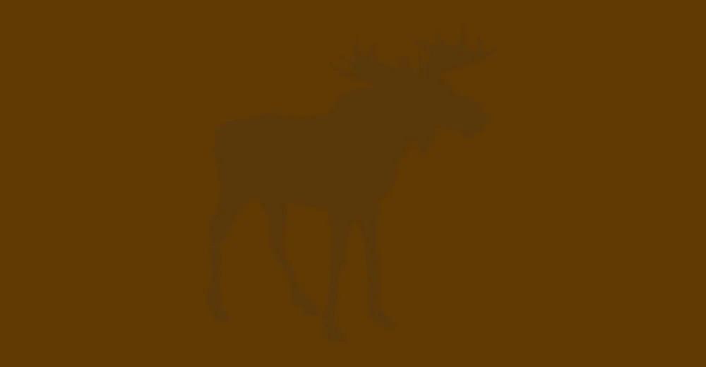 rusa-besar