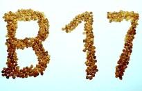Vitamin B17, bittere Aproikosen, Amygdalin, Laetril