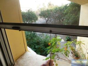 Moskito-Gitter an den Fenstern