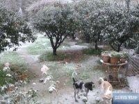 Schnee auf Kreta 2019