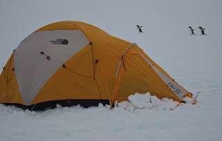 , Neu im Hurtigruten Antarktis-Programm 2012/13: Camping-Abenteuer auf dem weißen Kontinent