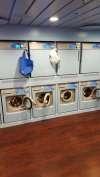 Waschen an Bord AIDAprima