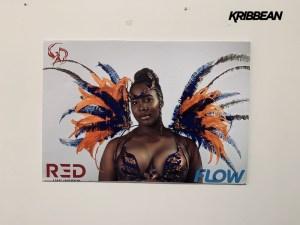 r3d unlimited stlucia carnival kribbean tag13