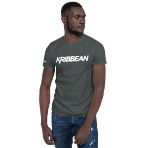 unisex basic softstyle t shirt dark heather front 60525202d95ea