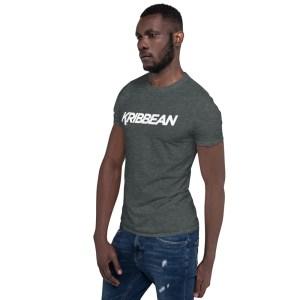 unisex basic softstyle t shirt dark heather left front 60525202da031
