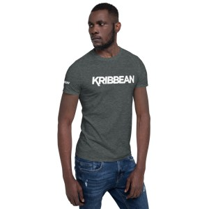 unisex basic softstyle t shirt dark heather right front 60525202d9afa