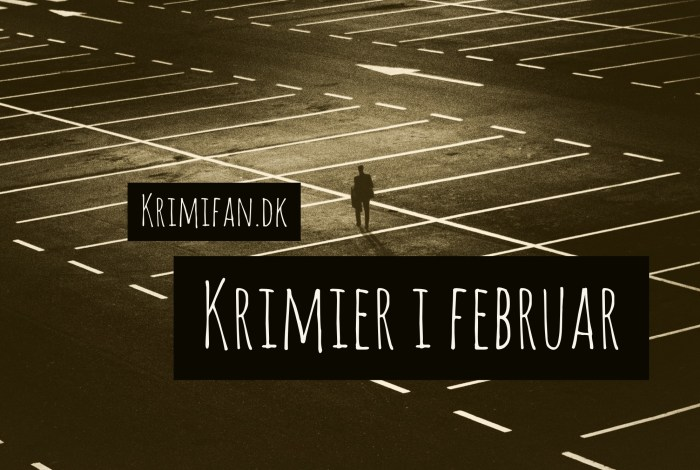 Krimir i februar 2017