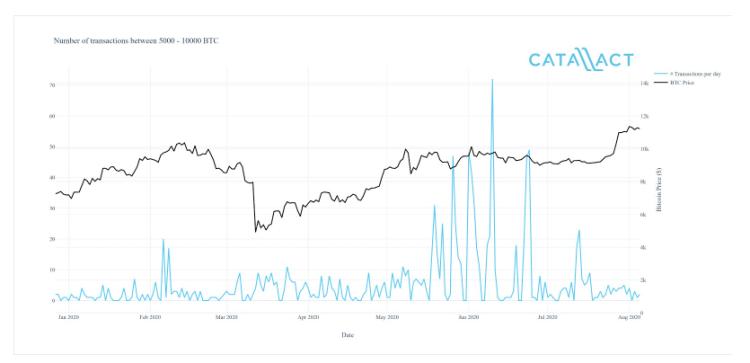 Dev Bitcoin Balinaları Kış Uykusundan Uyandı! İşte Balinaların Stratejisi… 3