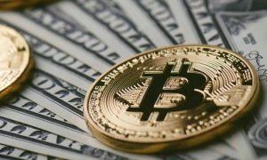 Çılgın Tahmin: Bitcoin Fiyatı 100x Yapacak! Buna Hazır Olun