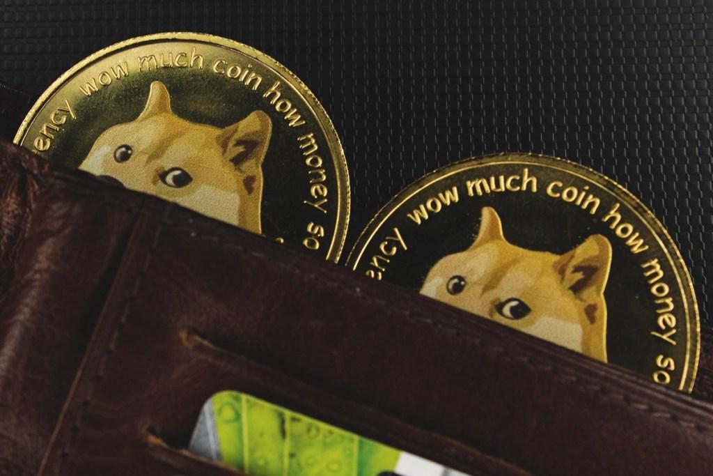Dogecoin Patladı! Bu Yatırımcıya, &Quot;Milyoner&Quot; Ünvanı Verdi