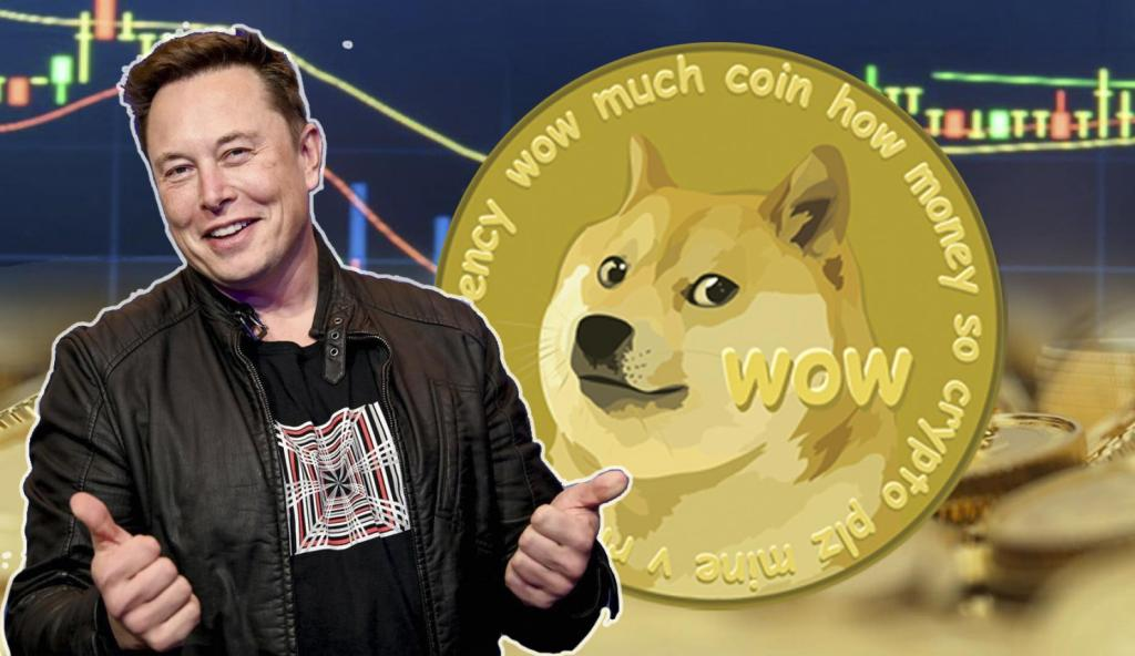 """Elon Musk """"Important"""" DOGE Tweets and Price Jumps!"""