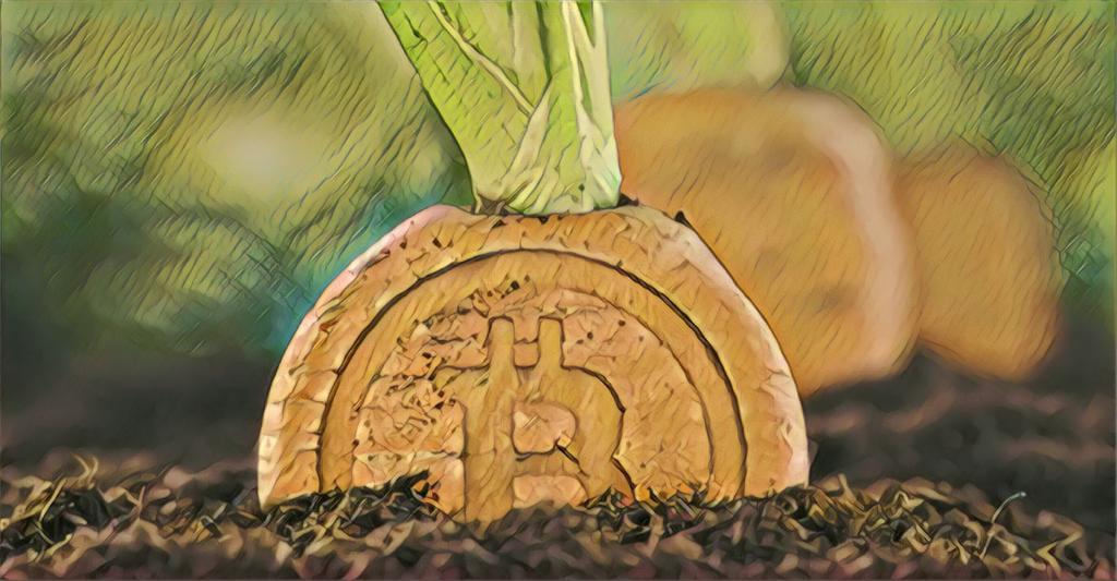 bitcoin taproot
