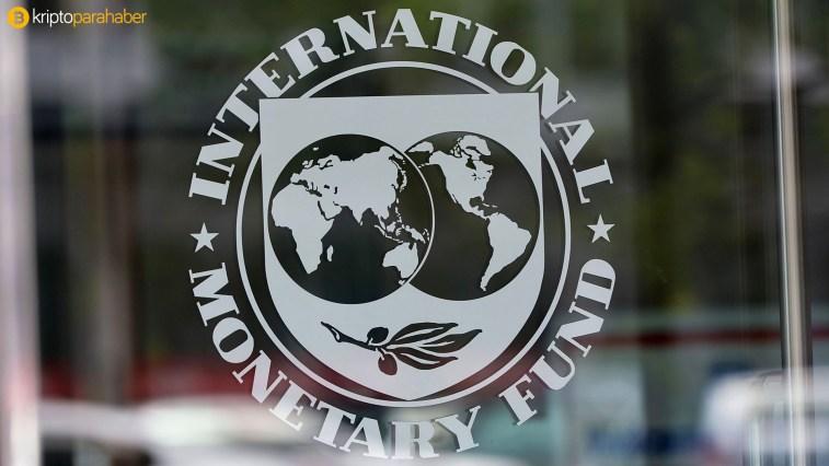 IMF RAPORU