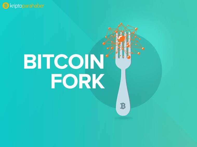 Hard fork kripto paraları yıpratıyor