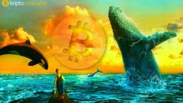 İşte 5 geçmiş Bitcoin fiyatı çöküşü
