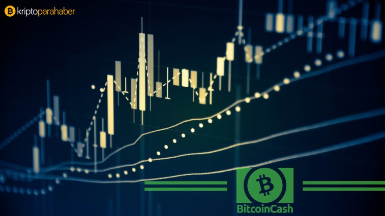 12 kasim bitcoin cash