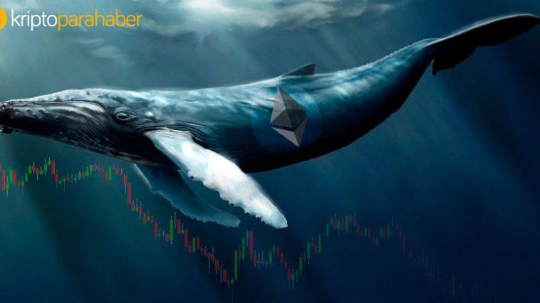Ethereum balina hareketleri ve fiyat analizi: ETH Boğaları savunmada
