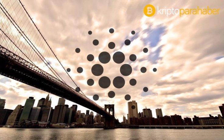 İşte son dönemde Bitcoin ile birlikte piyasa lider olan kripto para!