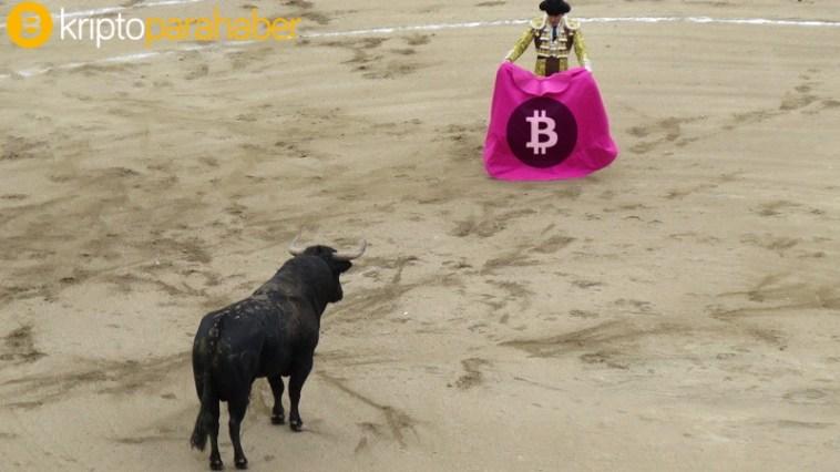 Top 4 kripto paraya genel bakış: Boğalar son hamlesinden sonra duraklıyor