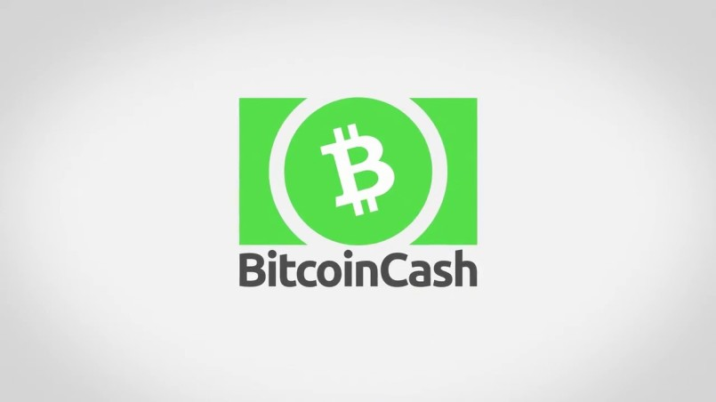 Большая часть майнеров поддерживает Bitcoin SV