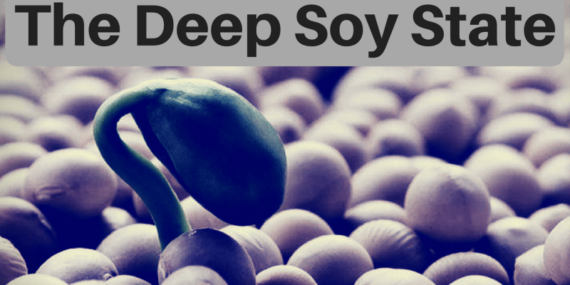 the-deep-soy-state