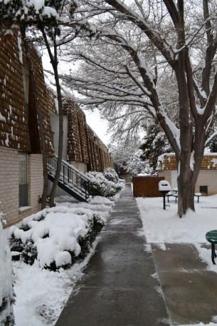 2015-02-28 snow 4