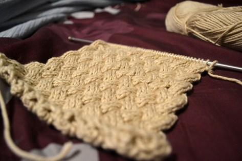 braid-chain-stitch-1