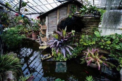 Allen Gardens Watermarked-10