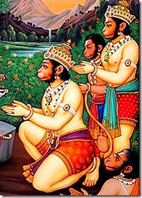 Hanuman and the Vanaras
